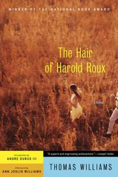 """The Hair of Harold Roux"" by Thomas Williams.  ""A great read covering sex, friendship, responsibility, regret, youth and middle age."""