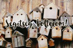Segítség! Költözés előtt állok! Ale, Urban, Bird, Outdoor Decor, Projects, Home Decor, Log Projects, Blue Prints, Decoration Home
