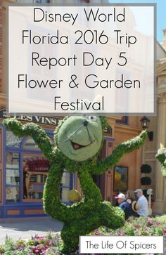 Disney World 2016 Diary - Flower And Garden Day 5 - The Life Of Spicers