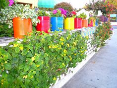 coffee cans turned planters really add color to this tiny backyard space -