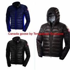 Canada Goose 2015-2016 low