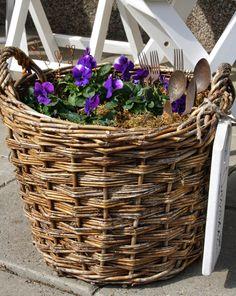 Orvokit tuovat kevään - Ideatasku