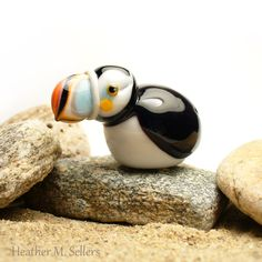 Atlantic Puffin ( Fratercula arctica ) by Heather Sellers Art Glass #ocean #sea…