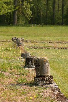 Les Fontaines Salées, near Vezelay, France