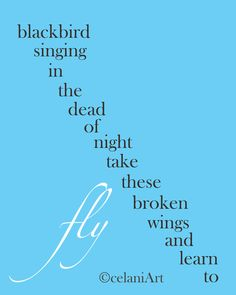 """""""take these broken wings and learn to fly"""" - blackbird"""