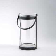 Grow Kit, Clear Glass Vases