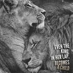 Lion quotes - 56 Short Inspirational Quotes That Will Inspire You (Fast) Infj Quotes, Qoutes, Couple Quotes, Love Quotes, King Queen Quotes, Lioness Quotes, Tiger Quotes, Lion Couple, Lion And Lioness