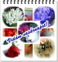 Vasárnap, - majornejulika Blogja - Anyák napja,Barát,Csajok,Csodás napot!,Csütörtök,Esős képek,fagyi,Festmények,Gyertyák,Hajdúböszörmény,Hétfő,idézetek,Idézetek,Jó éjszakát!,Jó reggelt!,Julikától,Kedd,kék rózsák,Kellemes délutánt!,kellemes hét végét!,Köszömöm,Ma,mesék,Mosoly,Névnapra,Nő napra,Ősz,Péntek,Pünkösd,Rózsák,Sütemények,Szép estét felíratok.,Szép hetet!,Szép képek,Szép napot!,Szerda,SZERETET,Szombat,Születésnapra,Tavasz,télapó,vasárnap,videó,Virág csendélet, About Me Blog