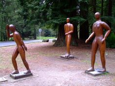 Art in the Redwoods, Rotorua