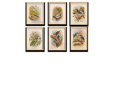 Set of 6 Miniature Birds Paintings On Silk Handmade in Rajasthan India, antique miniature painting  Theme: Birds  Base Material: Silk  Painted with extremely fine brushes made with just a few strands of squirrels' tail hair and bird feathers, the Rajasthani miniatures are made on silk and paper.  Be it wedding, engagement or other celebration, these miniatures made by the artists in Rajasthan (Indi