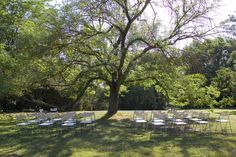 Wedding Ceremony in Gardens Wedding Ceremony, Gardens, Day, Floral, Outdoor Gardens, Flowers, Hochzeit, Garden, Yards