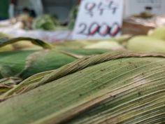 요즘 옥수수가 한참이죠..?   옥수수는 언제 삶아야 가장 맛있을까요...?   그야 배고플때 겠죠...ㅎㅎㅎㅎ   가장 맛있게 옥수수를 삶는 방법은 따자마자 바로 삶는것입니다 . .  옥수수 알갱이 의 껍질은 시간이 지날수록 두꺼워져서 맛이 떨어집니다 ...  그러니까 옥수수를 따서 그냥두지 마시고 따면 바로 삶아주세요...  삶을때는 뉴슈가나 신화당 쬐끔 넣고 ...진짜로 쬐끔....계량스푼 젤작은것...하나 둘정도 ..  그리고 적당량의 소금....간이 맞아야 맛나죠..ㅎㅎㅎㅎ   그러면 언제 꺼내느냐..?   도저히 못참겠다 싶을때요...ㅋㅋㅋㅋ   그게  한 20에서30분정도 ...^ ^  #광명전통시장 #맛집 #광명할머니왕족발 은 #광명소셜상점 #미리내가게 #먹스타그램 #프라이스톡 #광명동굴 과 함께 합니다