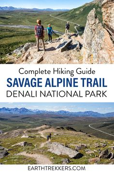 Everything you need to know to hike the Savage Alpine Trail in Denali National Park.