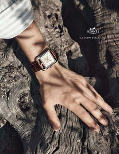 Hermes - Cape Cod Watch