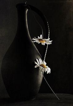 Glass Photography, Still Life Photography, Mickey Mouse Wallpaper, Daisy Love, Smoke Art, Beautiful Flowers Wallpapers, Still Life Photos, Wonderful Flowers, Foto Pose