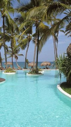 Punta Cana, Dominican Republic - Can't wait to be going here in December! :)