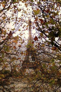 comtesse-du-chocolat:  Paris in October… (via pinterest)