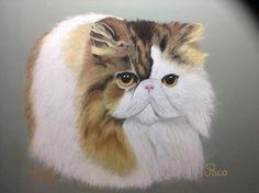 """""""Prijs""""kat. Verjaardagskado. Pastelpotlood en krijt"""