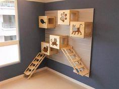 Painel para gatos Mais