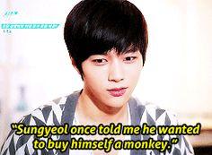 Sungyeol and his dream pet monkey #dumb #wtfsungyeol