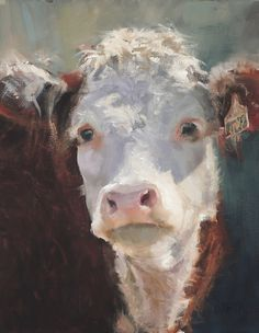 Bandit American Plains Artists Exhibition) by Daria Shachmut Oil ~ 18 x 14 Cow Photos, Cow Pictures, Animal Pictures, Cow Painting, Painting & Drawing, Paintings I Love, Animal Paintings, Hereford Cattle, Art Occidental