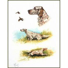 English Setters  by Joseph Bishop Pratt  Giclee Canvas Print Repro
