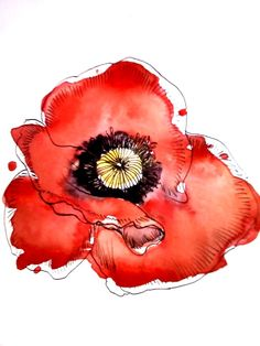 poppy love - watercolour and pen flower