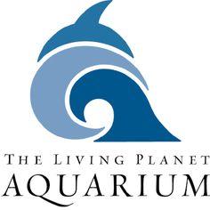 The living planet aquarium - Draper, utah  More information: http://www.thelivingplanet.com/