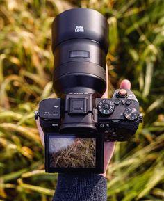 Lovely combo Sony A7RII Zeiss Batis 85mm | Photo by @martinellardphoto