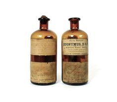 Antique Eli Lilly Pint Apothecary Bottles With by marybethhale