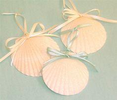 Ornements de plage 3 coquilles qui par SeashellCollection sur Etsy