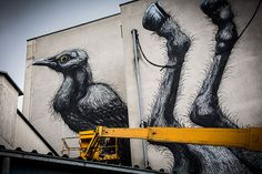 ROA Gets Up With New Animals In Tow | Jaime Rojo & Steven Harrington