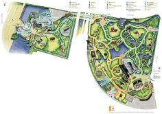 Diergaarde Blijdorp - plattegrond