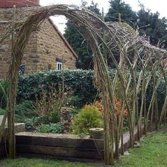 Living Willow Arch from Natural Garden Fencing Living Willow Fence, Willow Garden, Garden Arches, Willow Branches, Garden Fencing, Veg Garden, Garden Features, Garden Structures, Hedges
