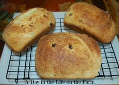 A Day in the Life on the Farm: Bacci Bread for #BreadBakers