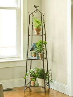 Branch Plant Stand - Green Friends for Our Home  IMAGES, GIF, ANIMATED GIF, WALLPAPER, STICKER FOR WHATSAPP & FACEBOOK