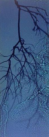 Rivertaw - Susan Derges - Wikipedia