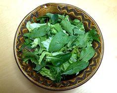 葉っぱがたべたい。 - 30件のもぐもぐ - グリーンサラダ1号 by akadashi7