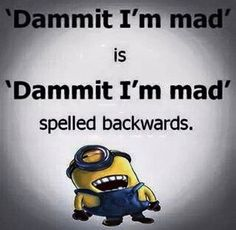 39 Super Ideas Funny Hilarious Laughing So Hard Humor Minions Quotes Funny Minion Pictures, Funny Minion Memes, Minions Quotes, Funny Jokes, Minions Images, Minions Pics, Minion Stuff, Funny Laugh, Haha Funny