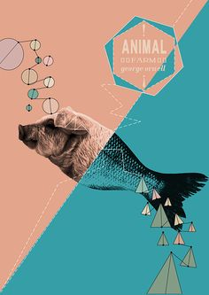 Book cover design by Abigail Edwards A2 Graphic Communication
