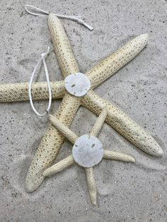 Starfish Christmas Ornaments with Sand Dollar Accent This Listing is for both Starfish Pictured The large starfish is 7 inches and the small is 3 inches If you have any questions please leave me a conversation, Thank you, I hope you have a sun filled day! You can add a cute Beach