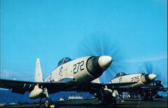 Westland Wyverns '272/E' and '276/E' of 813 Squadron aboard HMS Eagle c.1957-58