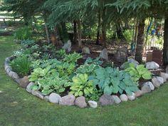 Growing plants in acidic soil