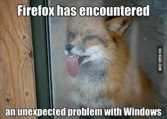 Firefox has encountered an unexpected problem with Windows
