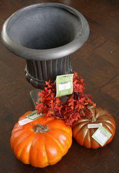 Outdoor Pumpkin Topiaries