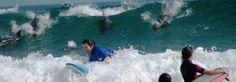 Surf camp in Australia. Working Holidays, Australia Travel, Surfing, Waves, Camping, World, Outdoor, Australia, Campsite