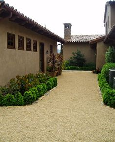 Dog Run - Pea Gravel and Shrubs. Could heat up too much without more shade.
