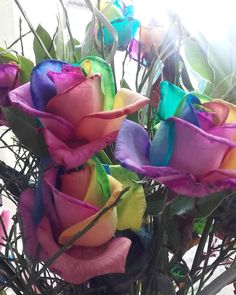Álainn: How To Press/Dry Flowers . Have some beautiful flowers you want to keep forever like these rainbow roses then here's how to press and dry your gorgeous flowers 😊 Fresh Flowers, Dried Flowers, Beautiful Flowers, Farm Projects, Rainbow Roses, Diy Tutorial, Creative, Plants, Blog