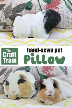 How to make your own DIY pet pillow using heat transfer paper. This is a fun and easy sewing craft for kids and the finished cushion of a favourite pet would also make a sweet hand made gift idea Animal Crafts For Kids, Animal Projects, Animals For Kids, Diy Crafts For Kids, Fun Crafts, Simple Crafts, Craft Projects, Craft Ideas, Diy And Crafts Sewing