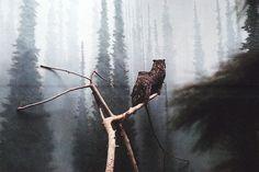 owlstogether by Sticherbeast, via Flickr